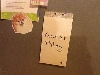 What Is the True Marketing Value of Guest Blogging?   Relevance